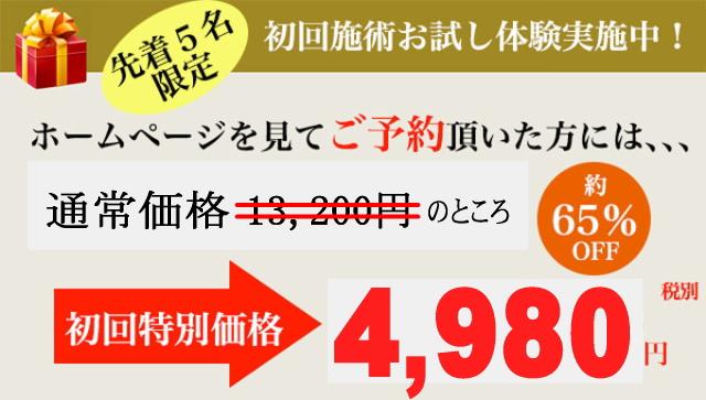 4980kakaku.jpg